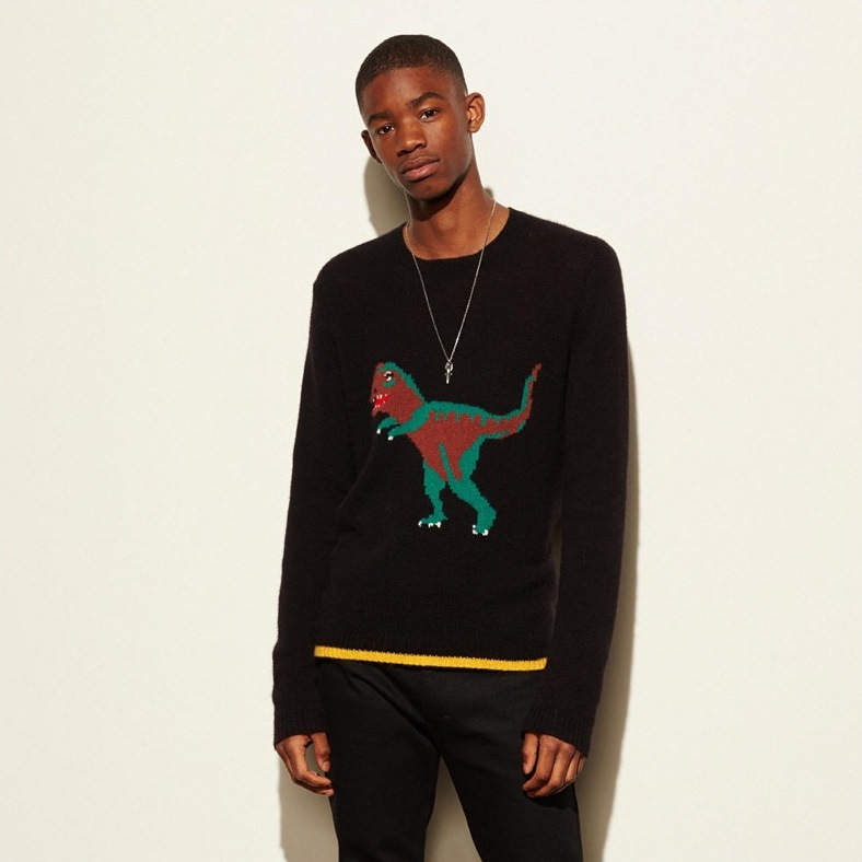 coach-mens-rexy-sweater